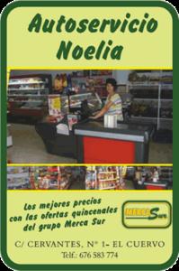 LogoAutoservicioNoelia