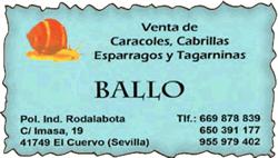LogoCaracolesBallo