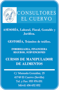 LogoConsultoresElCuervo