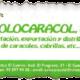 LogoSoloCaracol