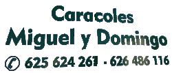 LogoCaracolesMiguelyDomingo