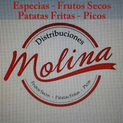 LogoDistribucionesMolina