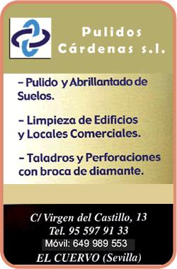 LogoPulidosCardenas
