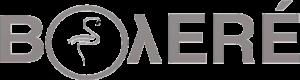 Logo_Grupo_Boyere