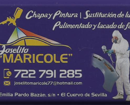Logo Taller Joselito Maricole